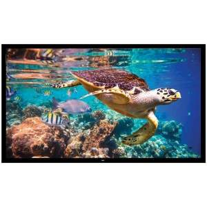 Fixed Wall-Mount Projector Screen (120-Inch) - Projector and Screen