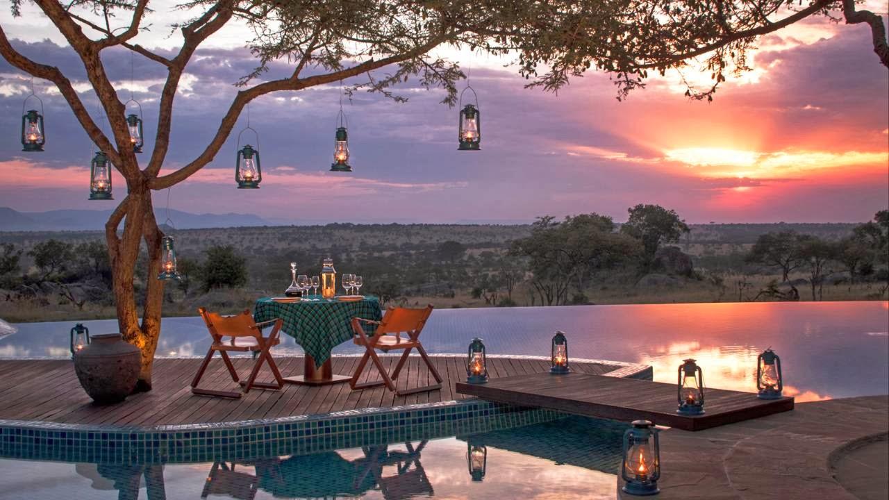 I 10 Safari Africani di Lusso pi Costosi  Smartweek