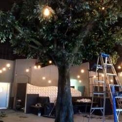 fake-tree