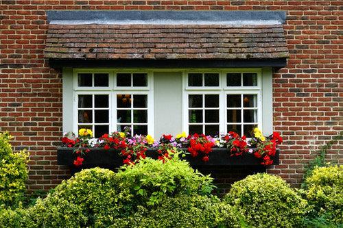 Flower garden by the window