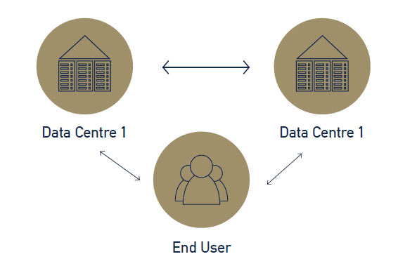Disaster Recovery Process Data
