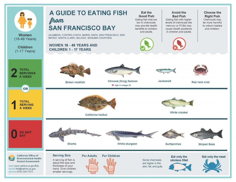 Seafood Buffet San Francisco Bay Area