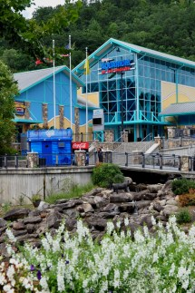 4 Fun And Exciting Attractions In Gatlinburg Tn