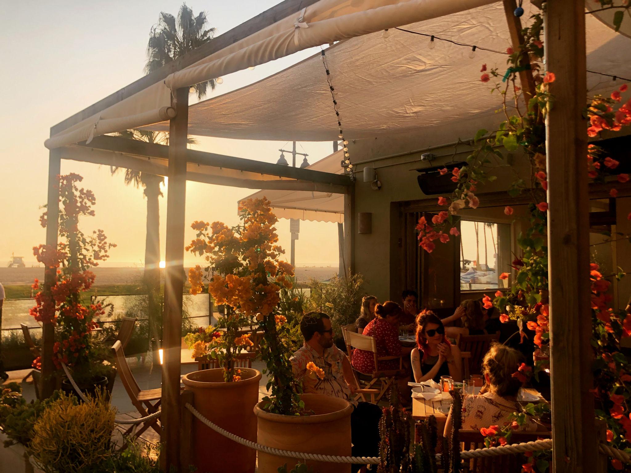 restaurant spotlight fig tree cafe