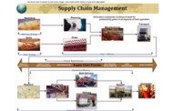 Supply Chain Leaders to Rule the Emerging Markets