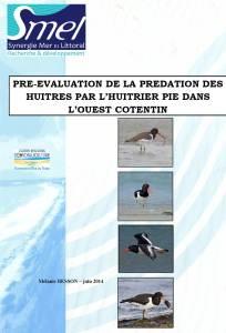 rapport_huitrier_pie