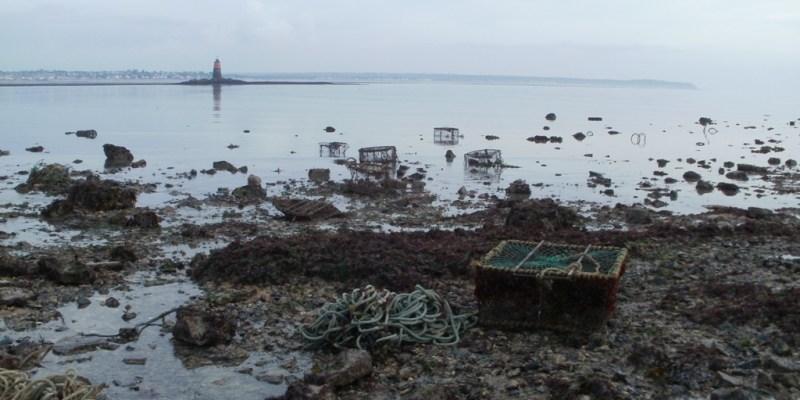 Casiers perdus en baie de Granville  (SMEL)