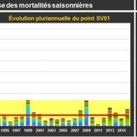 Crasville Mortalité Adulte
