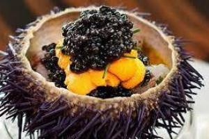 Oursin prêt à déguster (@M. Castilla Galivan)