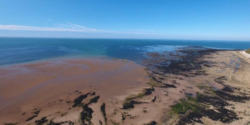 Vue par drone de l'estran des falaises de Bennière-sur-mer (Calvados, France) (@SMEL)
