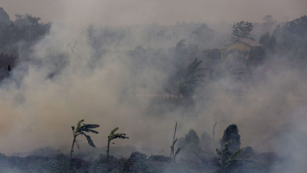 Thick smoke from a peatland fire in the Ogan Ilir district in Palembang, Indonesia, earlier this month.