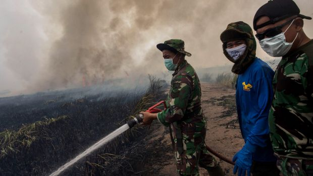 Indonesian soldiers extinguish the fire on burned peatland and fields in Palembang earlier this month.