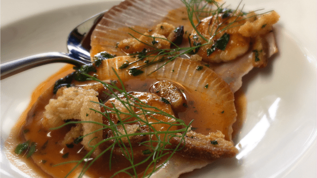 Seared scallops: rich broth, perfectly cooked seafood.