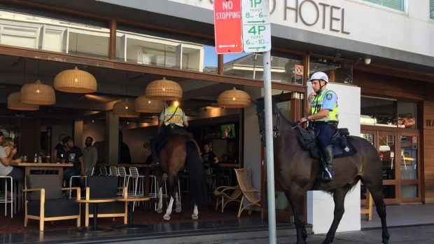 Hard-earned thirst: A police horse walks into a Bondi bar.