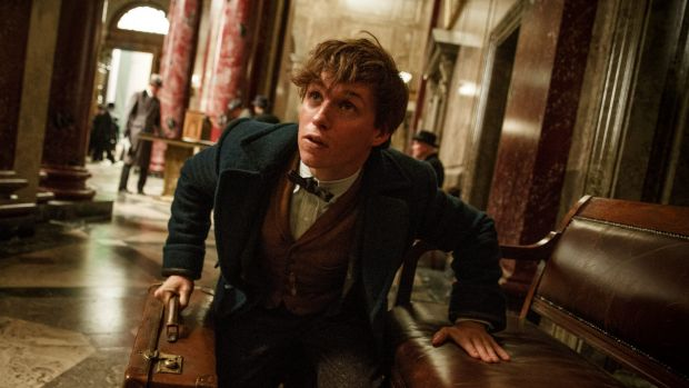 Eddie Redmayne stars as Newt Scamander in <i>Fantastic Beasts and Where To Find Them</i>.