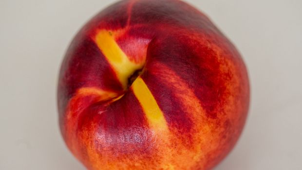 Stoney passion: nectarine.