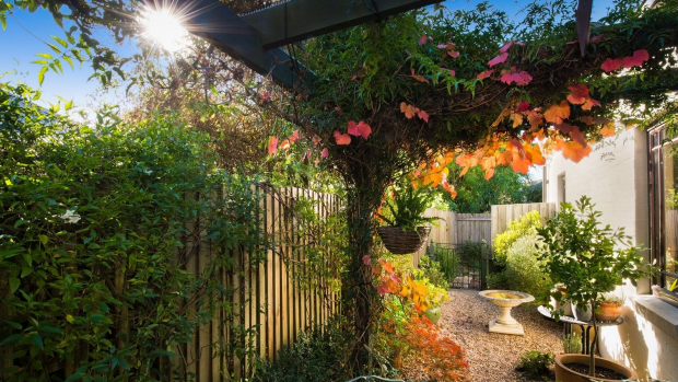 Living in a compact property doesn't have to mean giving up on a garden.