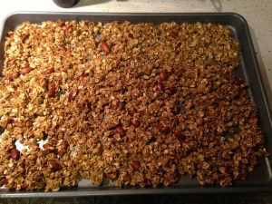 Fruit n Nut Granola - 5