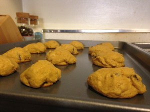 Pumpkin Chocolate Chip Cookies - 14