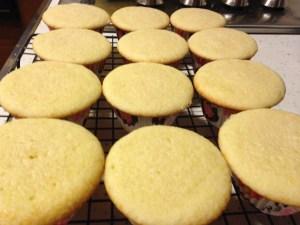 Vanilla Vanilla Cupcakes - 15