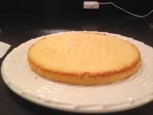 Lemon Blueberry Layer Cake - 13