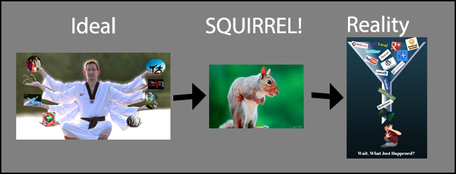 ideal-squirrel-reality
