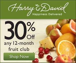 Harry and David banner ad design example