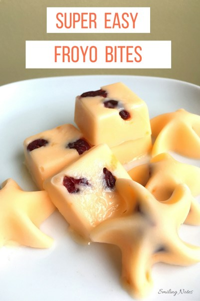 Healthy and Easy Frozen Yogurt Bites