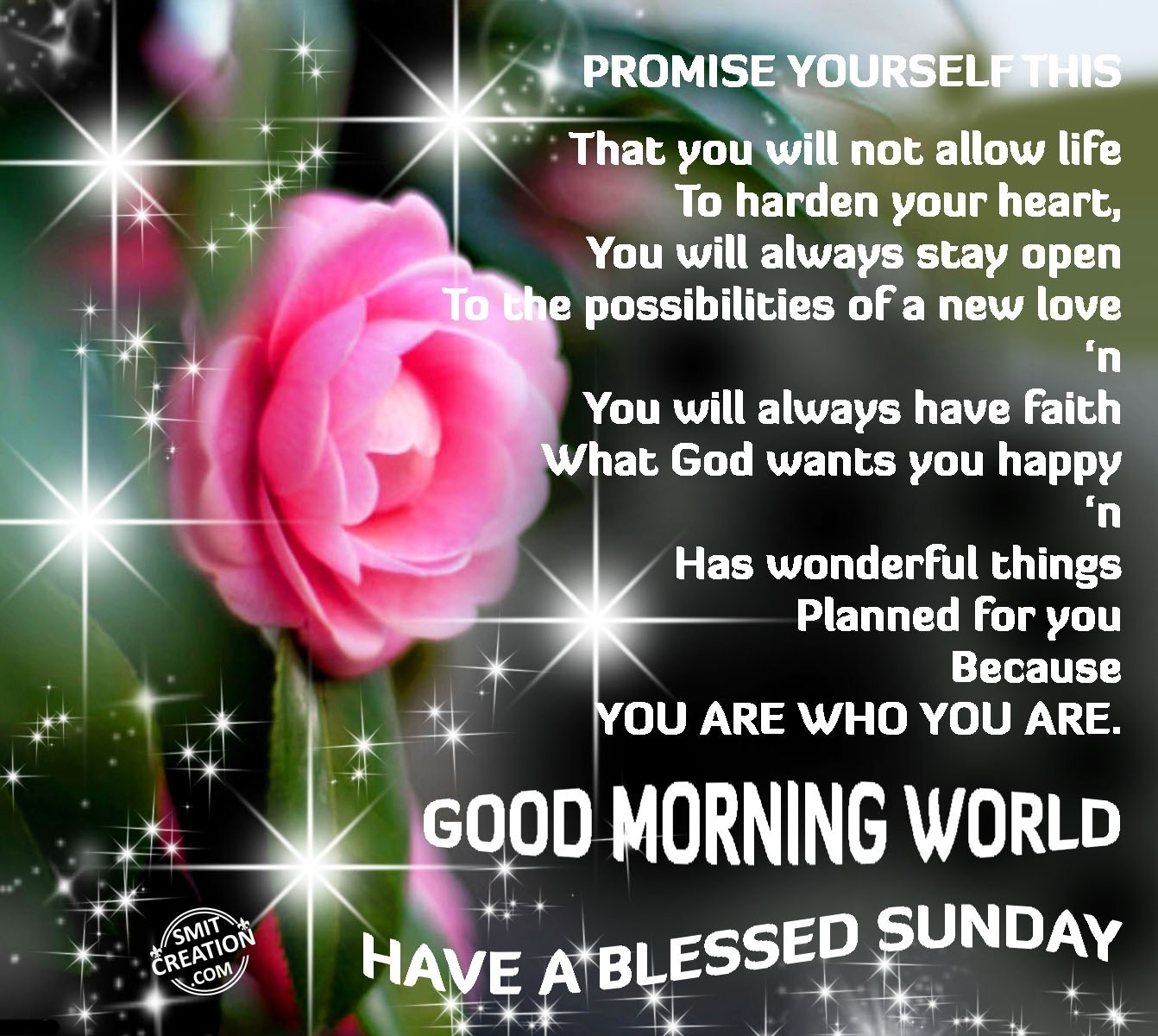 GOOD MORNING WORLD – HAVE A BLESSED SUNDAY SmitCreation Com
