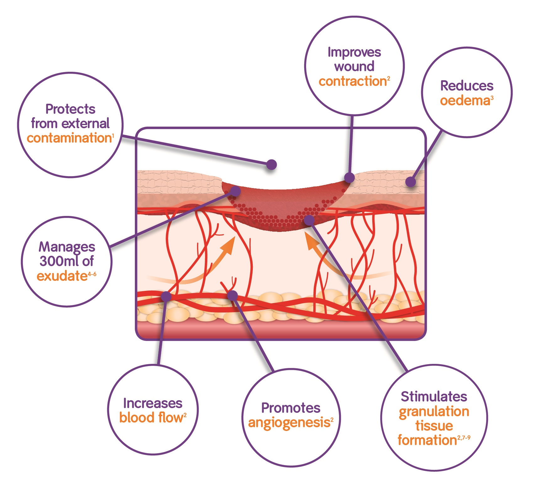 wound assessment diagram horse neck how pico works smith and nephew