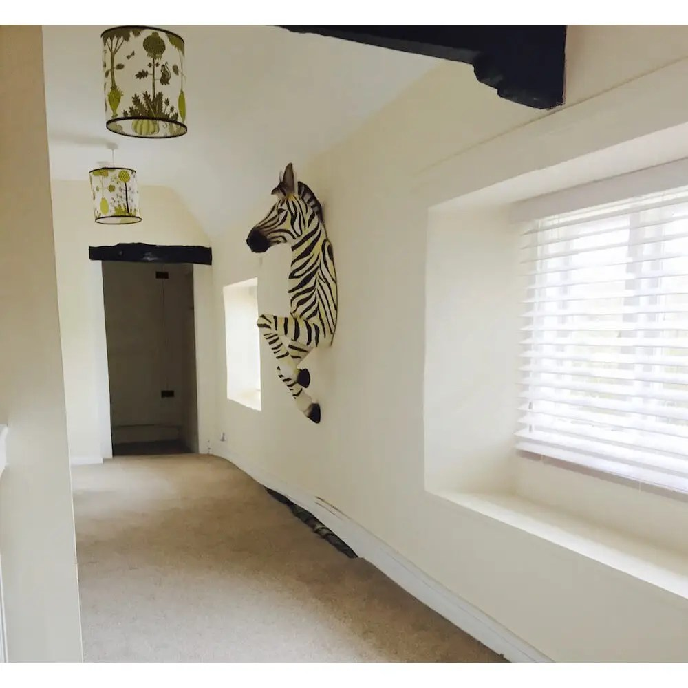 Large Life Size Zebra Animal Wall Mount Decoration Unique