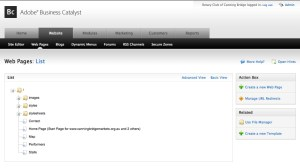 Adobe Business Catalyst Website window - web page user interface