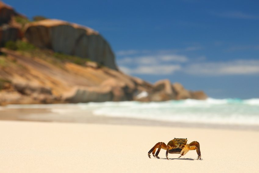Esperance Beaches, Australia