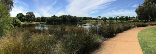 Lake Jualbup, Shenton Park, Western Australia 6008