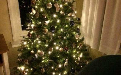Vakantiehuisje Smoek ook dit jaar weer in kerstsfeer!