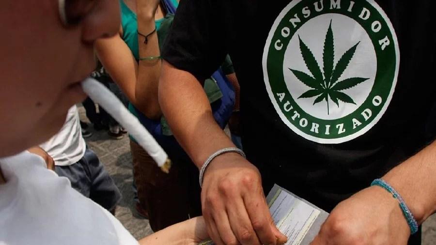 impacto descriminalizacao uso drogas neutro exterior smoke buddies Impacto da descriminalização sobre uso de drogas foi neutro no exterior