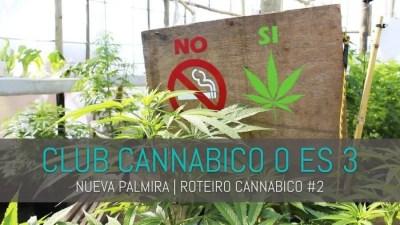 ROTEIRO CANNABICO CAPA e1480272135158 CLUB CANNABICO 0 ES 3 | NUEVA PALMIRA ROTEIRO CANNABICO #2