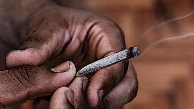 A MACONHA E O DIA DA CONSCIÊNCIA NEGRA SMOKE BUDDIES MACONHA E QUILOMBO