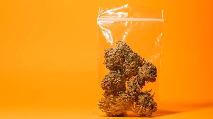 10 paises cannabis uma fria  Dez países onde você não gostaria de ser pego com cannabis