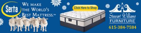 Stewart williams mattress snowflakes 511