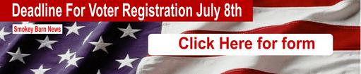 Voter deadline banner ad 511