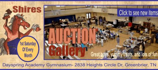 Shires auction B