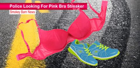 police looking for streaker