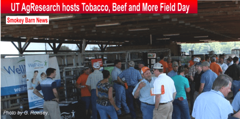 tobacco beef field day slider b