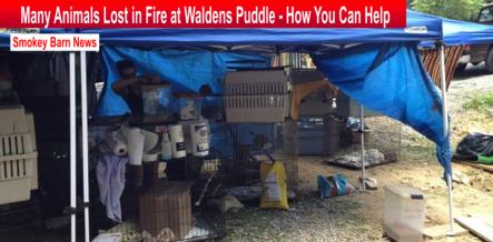 waldens puddle fire slider