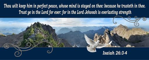 Perfect peace sky dove