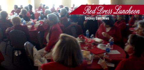 Red dress luncheon slider 2015