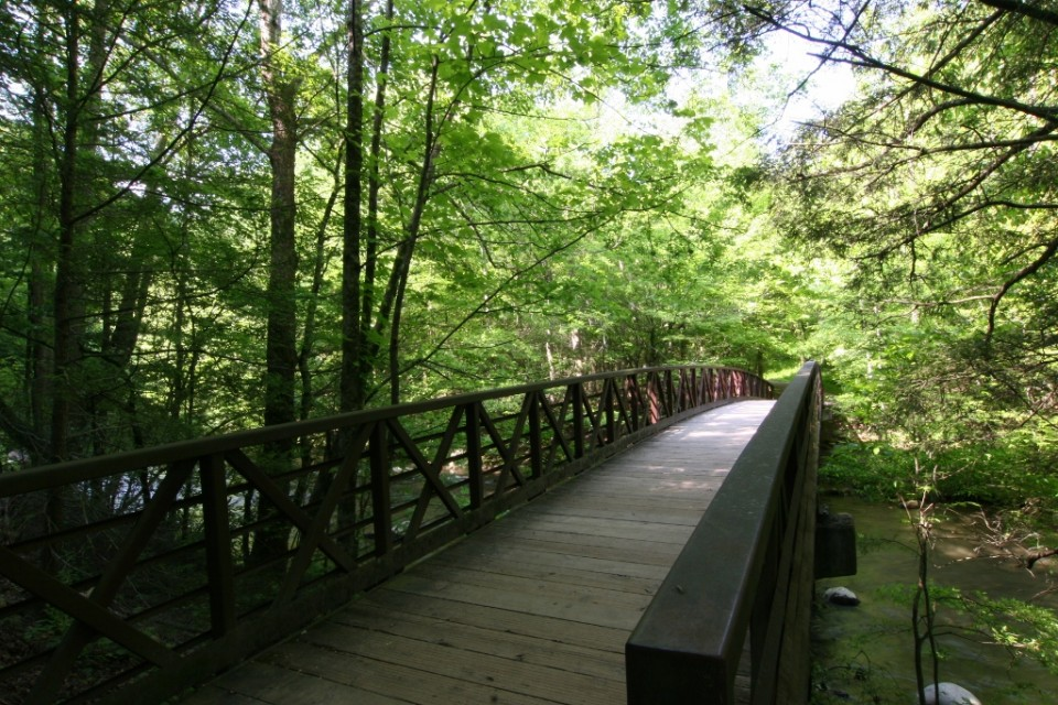 It's an easy trail for the great smoky mountains national park, but you'll still see plenty of breathtaking vistas and fascinating historical log cabins along the way and it starts off conveniently close to sugarland. Gatlinburg Trail Smokies Guide