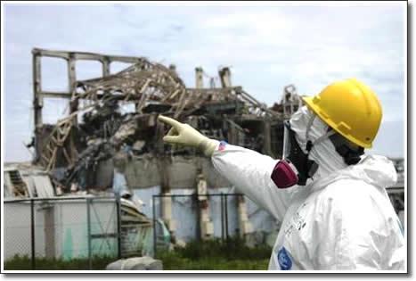 Uszkodzone Fukushima roślin