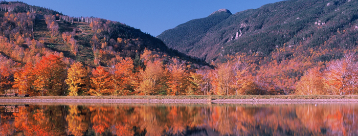 Fall Group Vacation Options